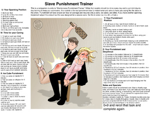 Slave Punishment Trainer