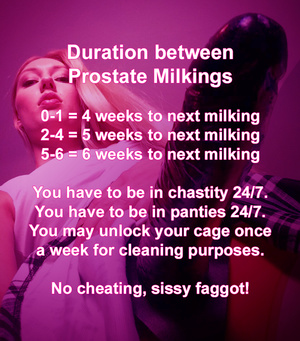 Prostate Milking Duration