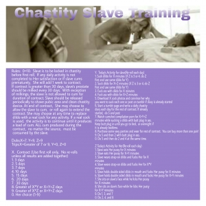 Chastity Slave Training