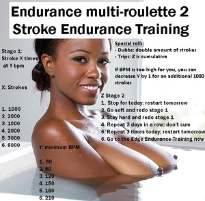 Endurance Multi-Roulette 2: Stroke Endurance Training