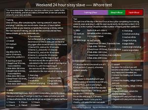 Weekend 24 hour sissy slave - prostitute test