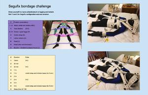 Segufix Bondage Challenge
