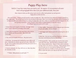 Puppy Play Intro