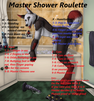 Master Anal Shower Roulette